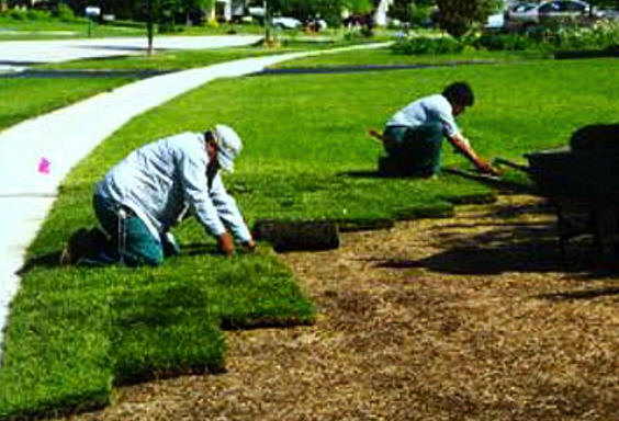 Commercial and Residential Lawn Maintenance Company For Sale