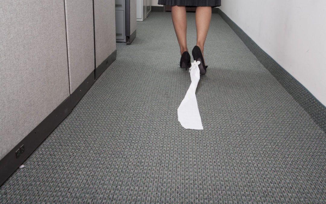 St. Augustine Carpet Cleaning Business For Sale