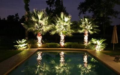 Lush Landscape Design Firm Is A Ripe Jacksonville Business For Sale