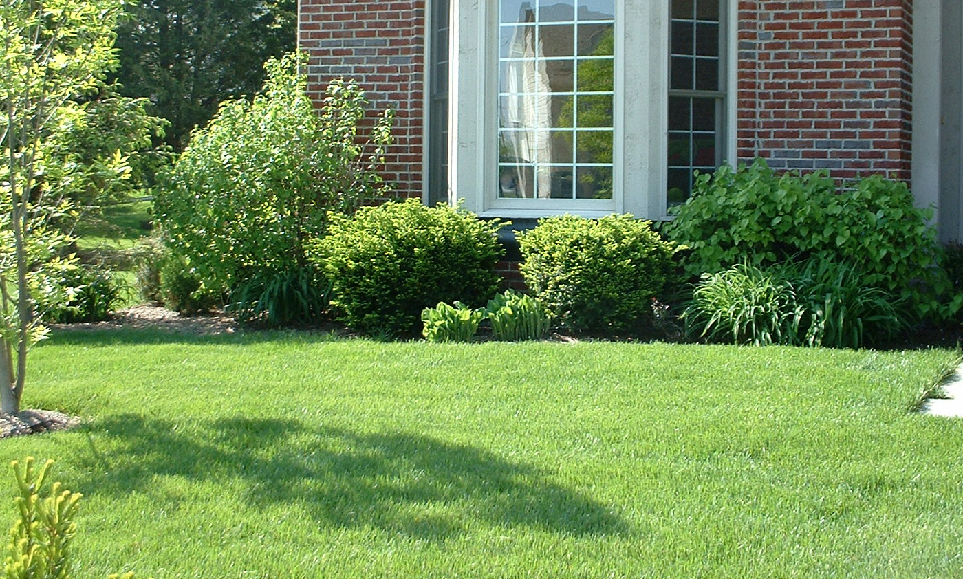 Jacksonville Lawn Care Company for Sale