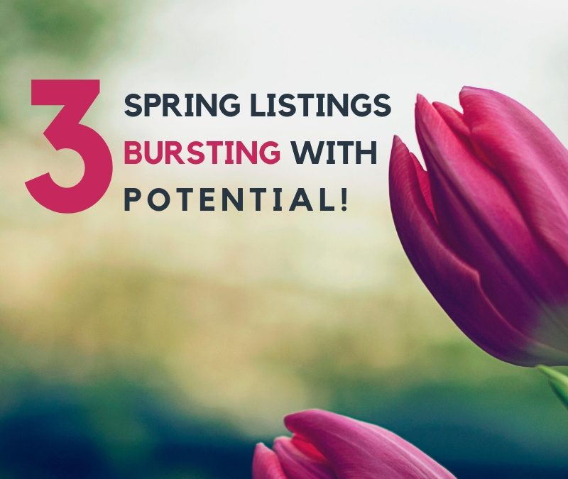 3 Spring Listings Bursting with Potential!